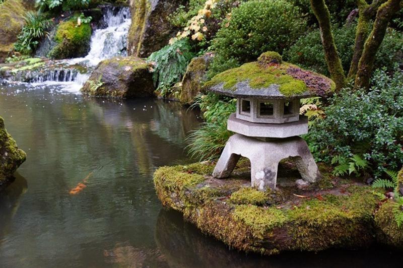 Gardens of Japan | Clonmel Garden Centre
